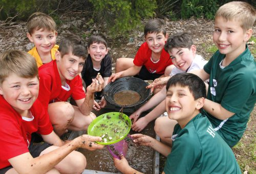 Junior School | St Patrick's College Strathfield